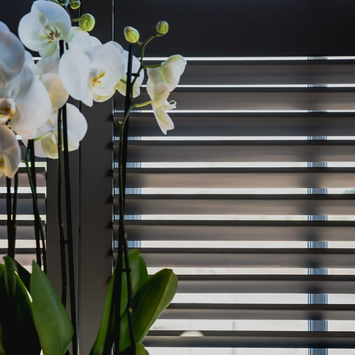 Piet Boon shutter met bloemen